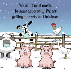 CV7  Funny Christmas Card COVID Pigs